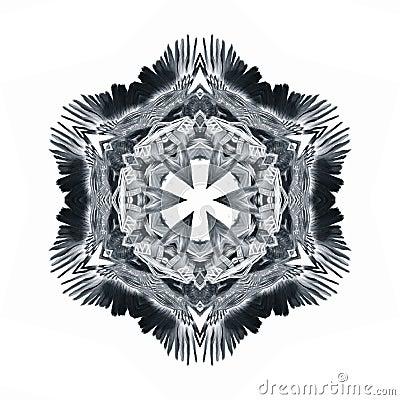 Eagle Crest Glyph Symbol