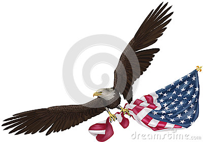 Eagle Carrying Flag Image Mag
