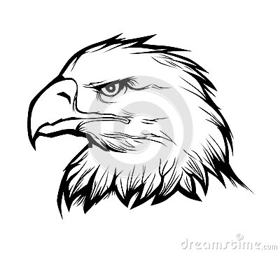 Free Eagle Head Royalty Free Stock Photography - 39037077