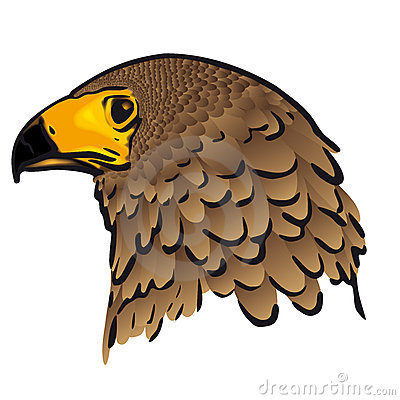 Eagle head (vector)
