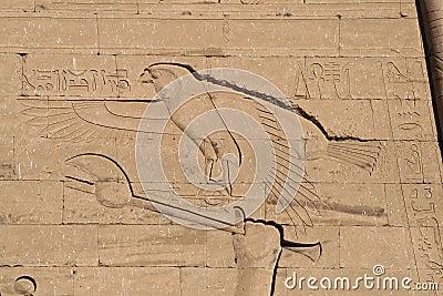 Eagle hieroglyph