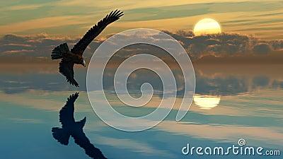 Eagle Lake A1