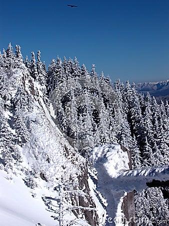 Eagle and mountain peak Stock Photo