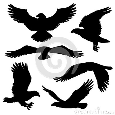 Free Eagle Or Hawk Silhouettes With Broad Wings Royalty Free Stock Photo - 130754545