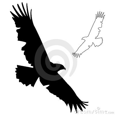 Free Eagle Silhouette Stock Photo - 7486640