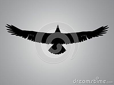 Eagle silhouette spot