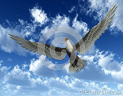 Eagle In Sky 33