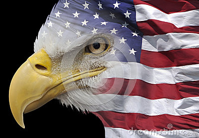 Eagle und Flagge