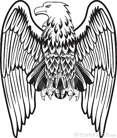 Free Eagle With The Lowered Wings Royalty Free Stock Photos - 13830738