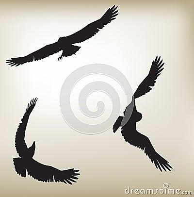 Eagles Silouwete