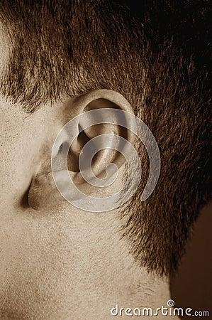 Free Ear Royalty Free Stock Photos - 398728