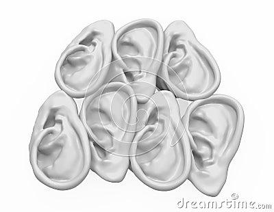 Ear 7