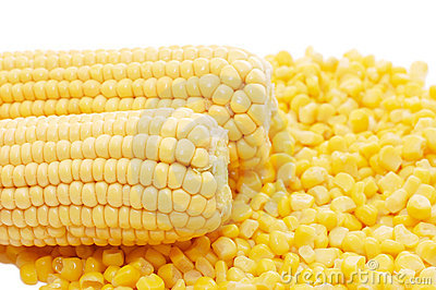 Ear of fresh corn and tinned corn