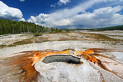 Ear Spring - Yellowstone National Park