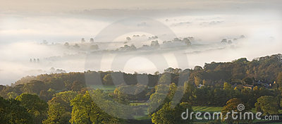 Early Mist