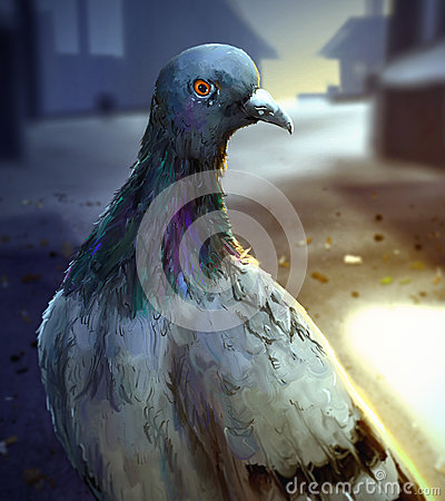 Early Morning City Pigeon - Digital Painting