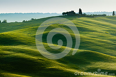 Early morning on countryside near Pienza, Tuscany,