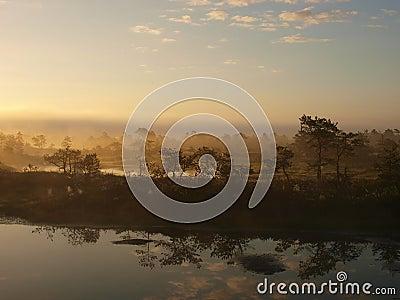 Early morning in Kakerdaja marsh