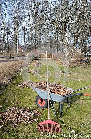 Early spring in home garden
