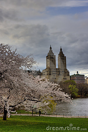 Free Early Spring In Central Park Stock Photos - 5034613