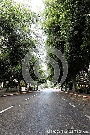 Empty Tel-Aviv Street