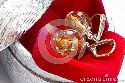 Earrings in gift box