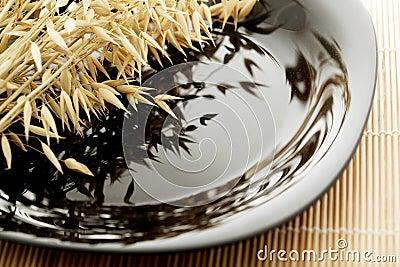Ears of oats on a black