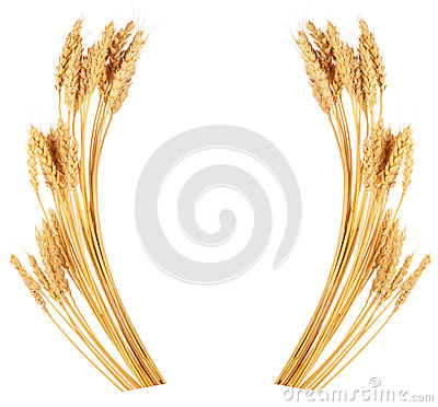 Free Ears Of Wheat. Frame Royalty Free Stock Photo - 82317875
