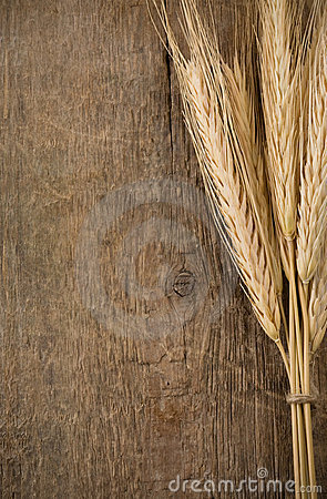 Free Ears Spike Of Wheat On Wood Royalty Free Stock Photos - 21182098