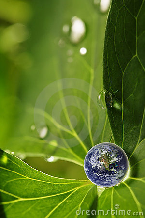 Free Earth On Leaf Royalty Free Stock Photos - 13596148