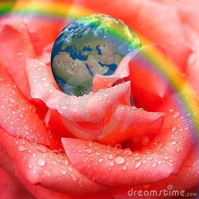 Earth on rose petal