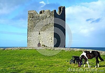 Easky Castle Co. Sligo Ireland