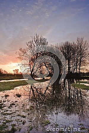 East Harnham water meadows.
