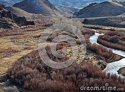 East Walker River in Western Nevada