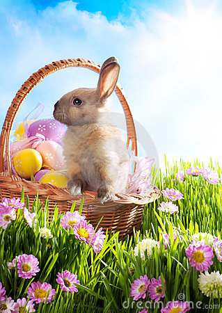 Free Easter Basket Decorated Eggs And Easter Bunny Stock Photo - 23598990