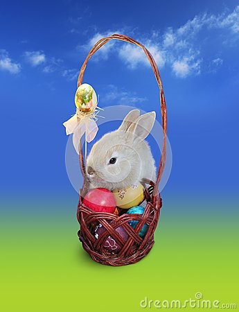 Easter bunny  with eggs basket, sky