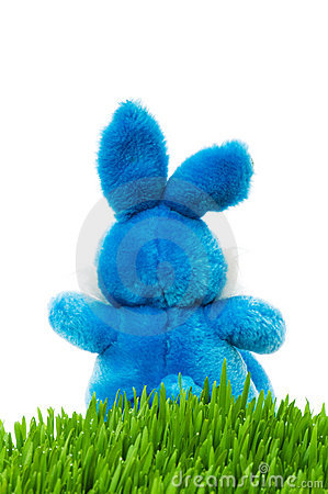 Easter bunny and green grass