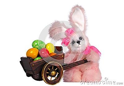 Easter bunny rabbit