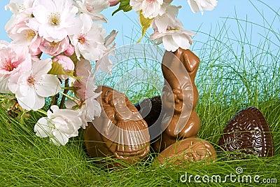 Easter bunny in springtime