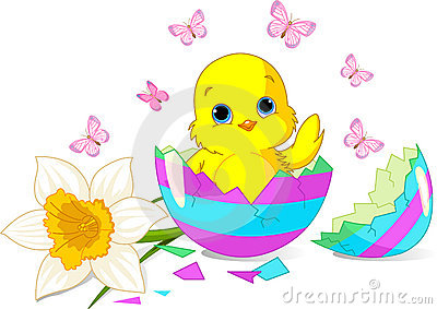 Easter chick surprise
