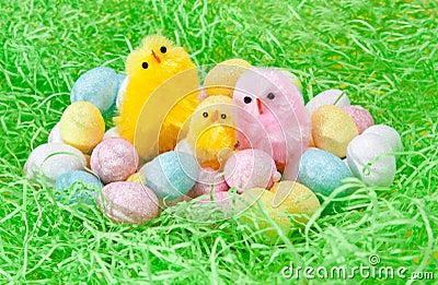 Easter Chooks