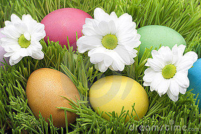 Easter colorful eggs in the grass
