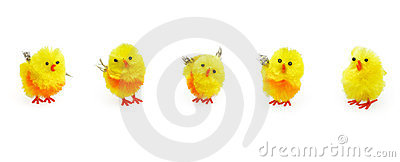 Easter cute yellow chicks for seasonal decoration