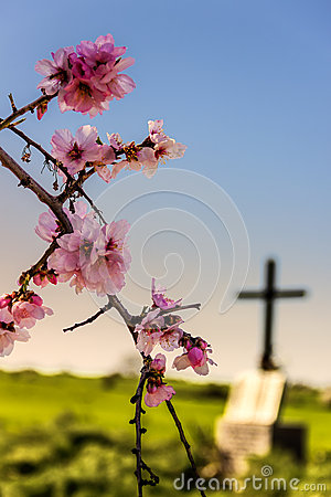 Free EASTER.Death And Rebirth: The Tomb And Almond Flowers(Apulia)-ITALY- Stock Image - 65460831