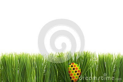 Easter egg behind grass isolated