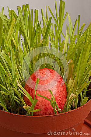 Easter egg in a brown flowerpot