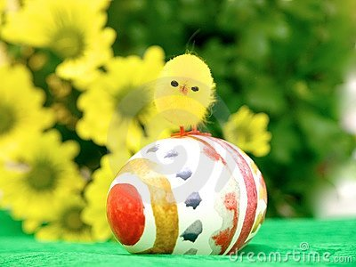 Easter Egg and Chick