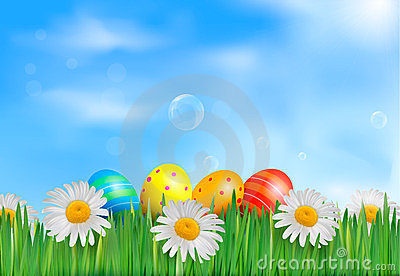 Easter eggs in the grass with daisies