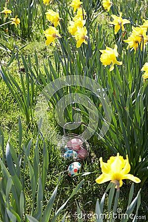 Easter Eggs Hidden For Hunt.