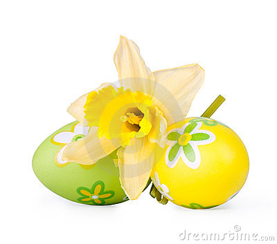 Easter eggs with narcissus flower